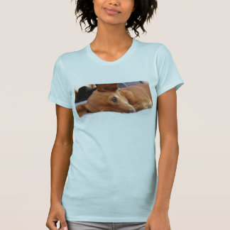Inki the Chihuahua T-Shirt
