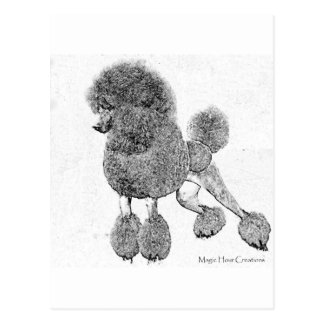 Inky Poodle Postcard