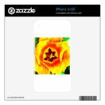 Innards del tulipán skins para eliPhone 4