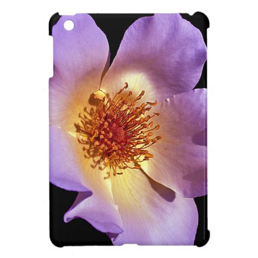 Inner Glow Vibrant Violet Blossom Case For The iPad Mini