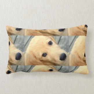 Innocent Abby Lumbar Pillow
