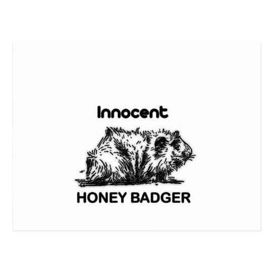 Innocent Honey Badger Postcard