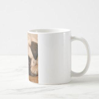 """"""" Innocent """" Pug Coffee Mug"""