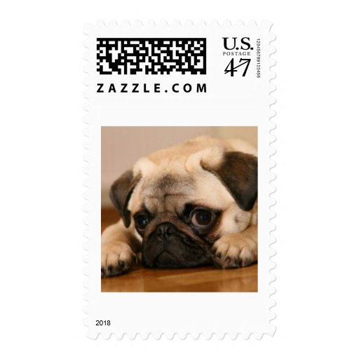 """"""" Innocent """" Pug Postage"""