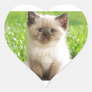 Innocent Ragdoll Kitten Heart Sticker
