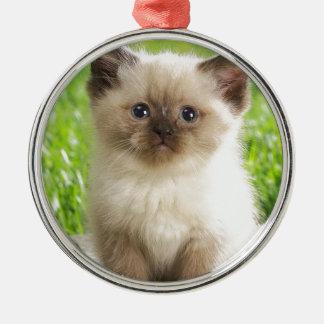 Innocent Ragdoll Kitten Christmas Ornaments
