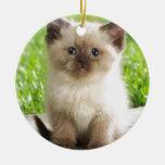 Innocent Ragdoll Kitten Double-Sided Ceramic Round Christmas Ornament
