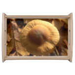 Inocybe napipes Mushroom Serving Tray