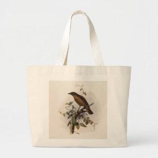 Inornatus de Amblyornis - Glorieta-pájaro Embotado Bolsa Tela Grande