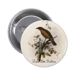 Inornatus de Amblyornis - Glorieta-pájaro Embotado Pin