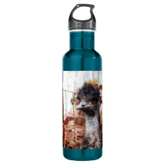 Inquisitive Emu Stainless Steel Water Bottle