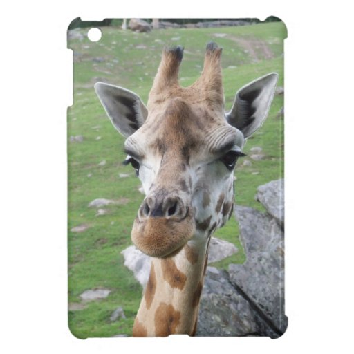 Inquisitive Giraffe iPad Mini Covers