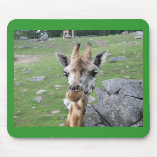 Inquisitive Giraffe Mouse Pad