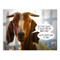 Inquisitive Goat Asks Questions Birthday Postcard