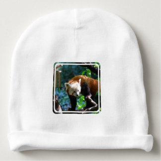 Inquisitive Red Panda Bear Baby Beanie