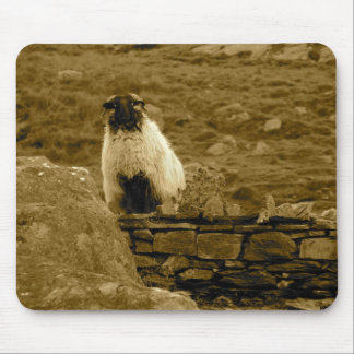 Inquisitive Sheep Mouse Pad