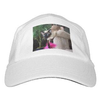Inquisitive Siamese Cat Headsweats Hat