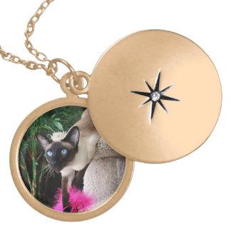 Inquisitive Siamese Cat Round Locket Necklace
