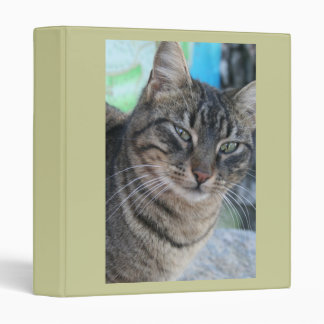 Inquisitive Tabby Cat With Green Eyes Binder