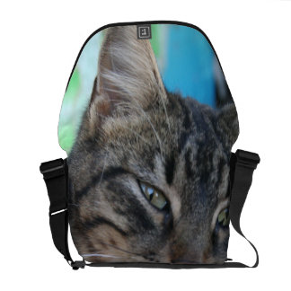 Inquisitive Tabby Cat With Green Eyes Courier Bag