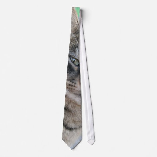Inquisitive Tabby Cat With Green Eyes Tie