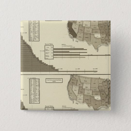 Insane, Idiotic, Blind statistical map Pinback Button
