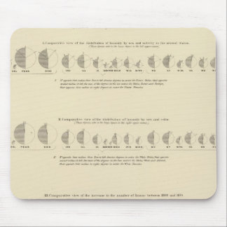Insane, Statistical US Lithograph 1870 Mouse Pad