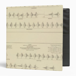 Insanity, Statistical US Lithograph 3 Ring Binder