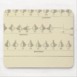 Insanity, Statistical US Lithograph Mouse Pad