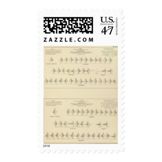 Insanity, Statistical US Lithograph Postage Stamp
