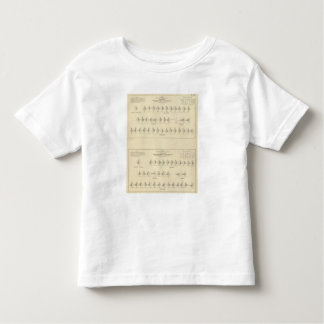 Insanity, Statistical US Lithograph Toddler T-shirt