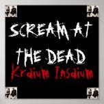 Insanium-Poster de Krainum