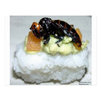 Insect (Bee) Sushi Gifts Tees & Collectibles Postcards