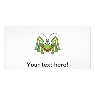Insect cartoon photo cards