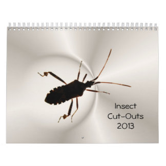 Insect Cut-Outs 2013 ~ calendar