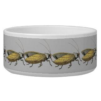 Insect  Dog Dish