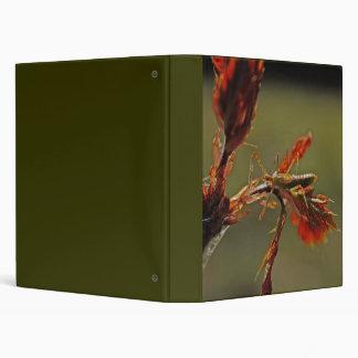 Insect on Oak Leaf binder