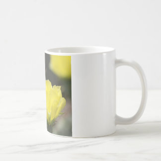 Insect on South Texas Cactus Flower Photograph Coffee Mug