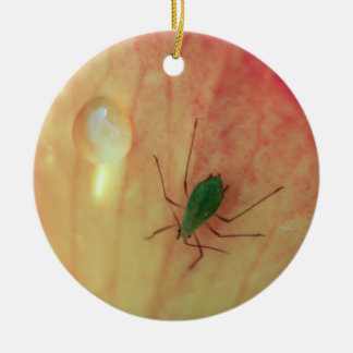 Insect Christmas Ornament