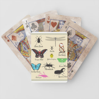 Insect playing cards