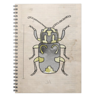 Insect Series | Green Beetle Notebook