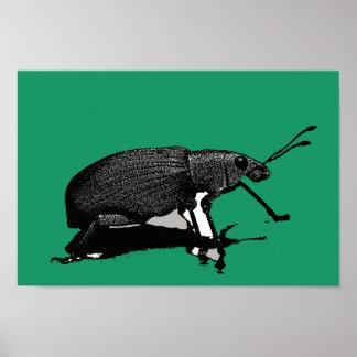 Insecto 2 del jade poster