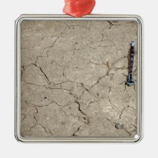 insecto agrietado adorno navideño cuadrado de metal