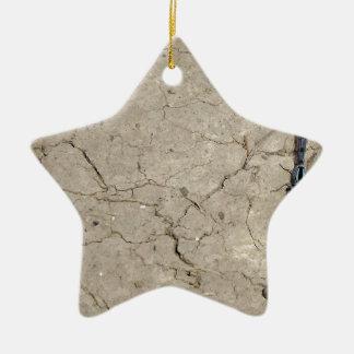 insecto agrietado adorno navideño de cerámica en forma de estrella