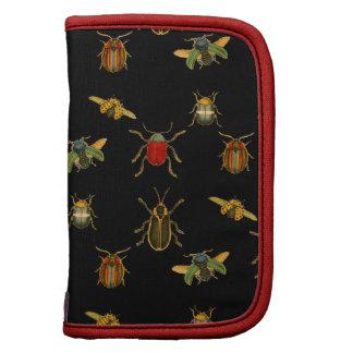 Insecto Argyle Planificador