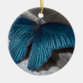 insecto azul de la mariposa que vuela las alas adorno redondo de cerámica
