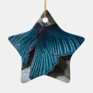 insecto azul de la mariposa que vuela las alas adorno de cerámica en forma de estrella