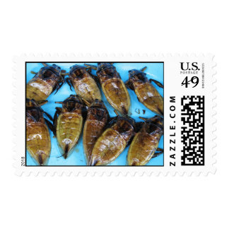 Insecto de agua gigante frito (Daa de Maeng) Timbres Postales