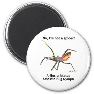 Insecto de asesino de la araña roja imán redondo 5 cm