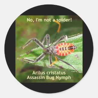 Insecto de asesino de la araña roja pegatina redonda